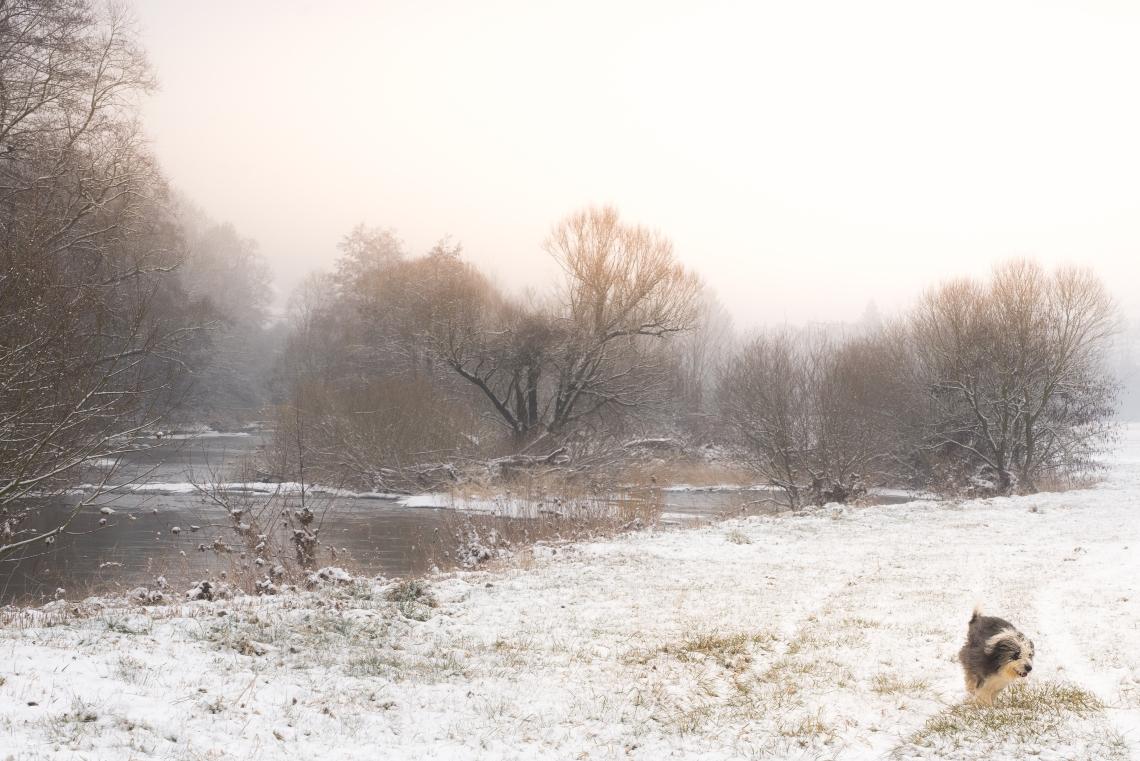 wintergames (1 von 1)