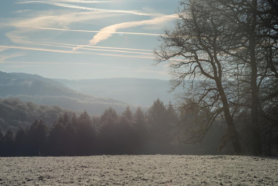 wintermorgen18 (1 von 1)